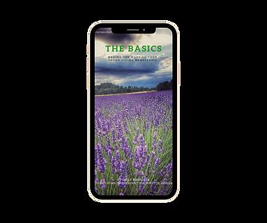 The Basics visual image