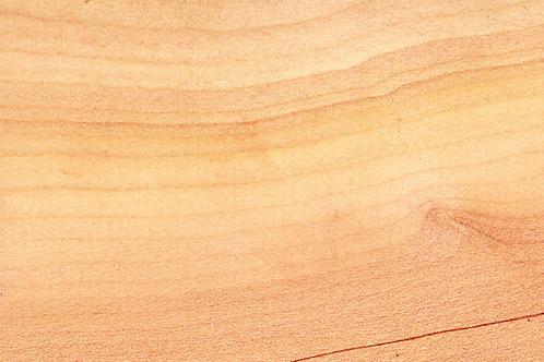 Cedar of Lebanon (sample)