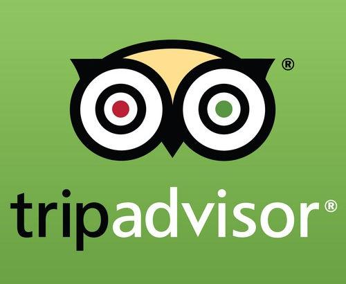 Trip-Advisor-logo-2_edited.jpg