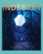 INSDES.jpg