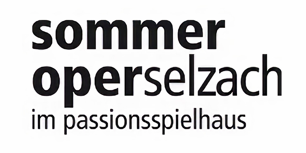 Verein Sommeroper Selzach, Mitgliederversammlung