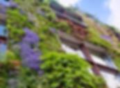 Jardin Vertical III.png