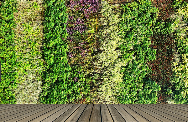 Jardin vertical II.png