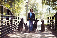 Dog training services in Macon GA