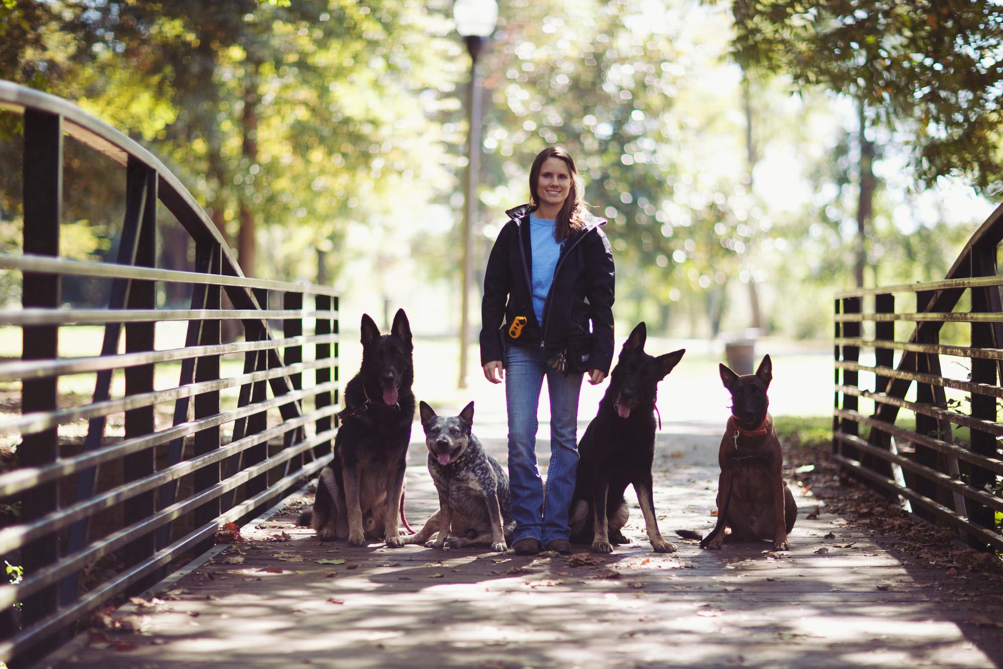 Gray's K-9 Academy Dog Training and Rehabilitation in Macon, GA