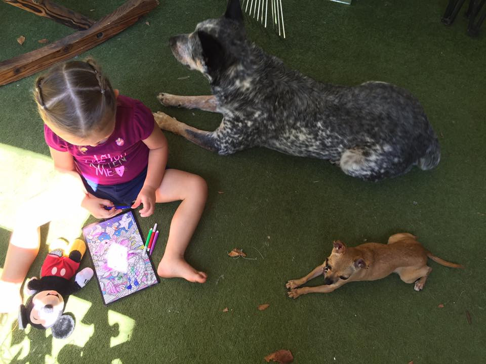 Kids with dogs