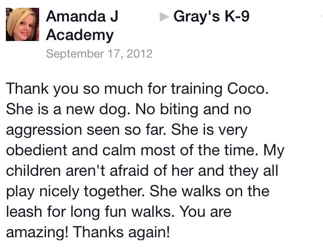 Puppy training success in Macon GA
