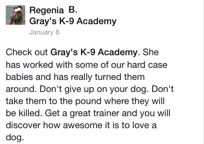 Dog training in Warner Robins GA