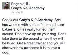 Dog training in Warner Robins GA