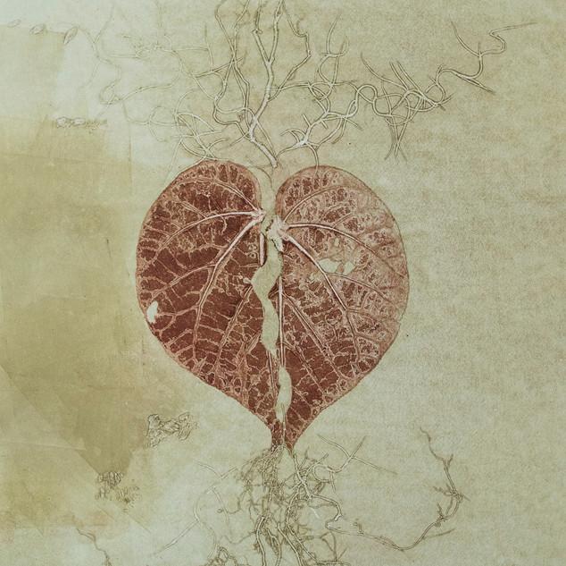 Coração (Apó series)   2019  54x40 cm  Monotipia e raíz  Peça única