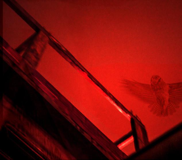 A Coruja (Babilonia series)  2014   60x30 cm   Pinhole e fotografia digital  Tiragem 5 + 2 PA