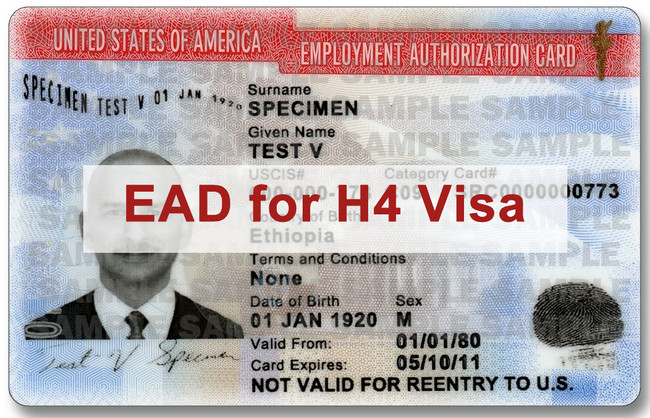 H4 Work Authorization for H1B Spouses to be stopped by Trump