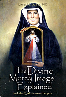 DIVINE MERCY IMAGE EXPLAINED by Fr Michael E. Gaitley, MIC