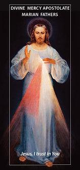 Divine Mercy Apostolate - FREE LEAFLET