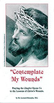 Contemplate My Wounds by Br. Leonard Konopka, MIC