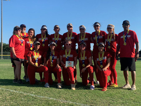 18U Gold Wins Silver TCS Texas State Championship!