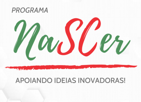 Equipes do Programa NaSCer buscam perfis para completar seus times