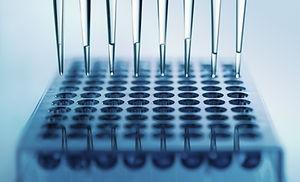 Enzyme Immunoassays Supplier