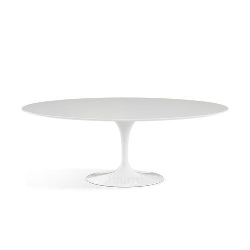 Oval (Fiberglass) Tulip Table