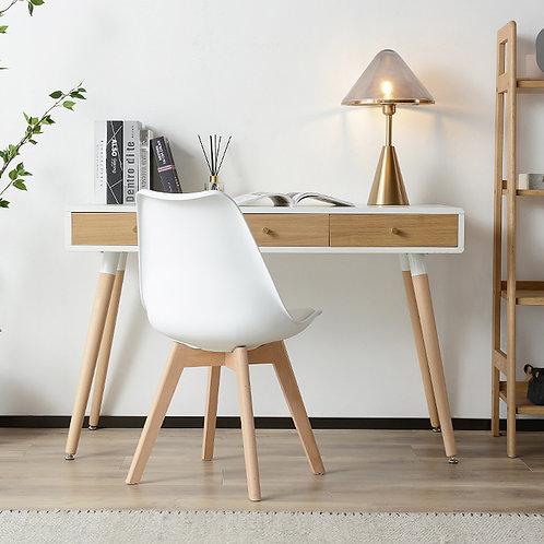 Chameleon Modern Desk