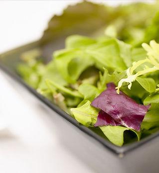 Grøn salat
