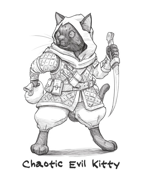 Sketch_D&D_KItties Rogue.jpg