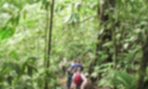Las Brisas Nature Reserve in Costa Rica   Nature trails   visit
