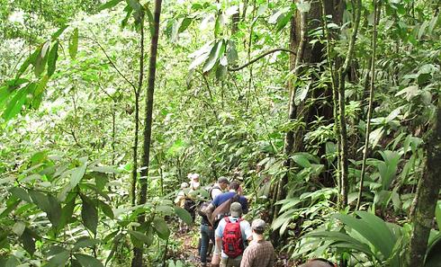 Las Brisas Nature Reserve in Costa Rica | Nature trails | visit