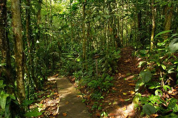 Las Brisas Nature Reserve in Costa Rica | Nature trails
