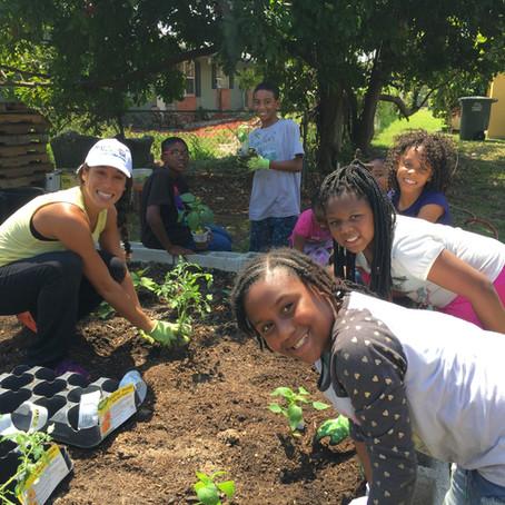 Health in the Hood Brings Fresh Food to Neighborhoods in Need