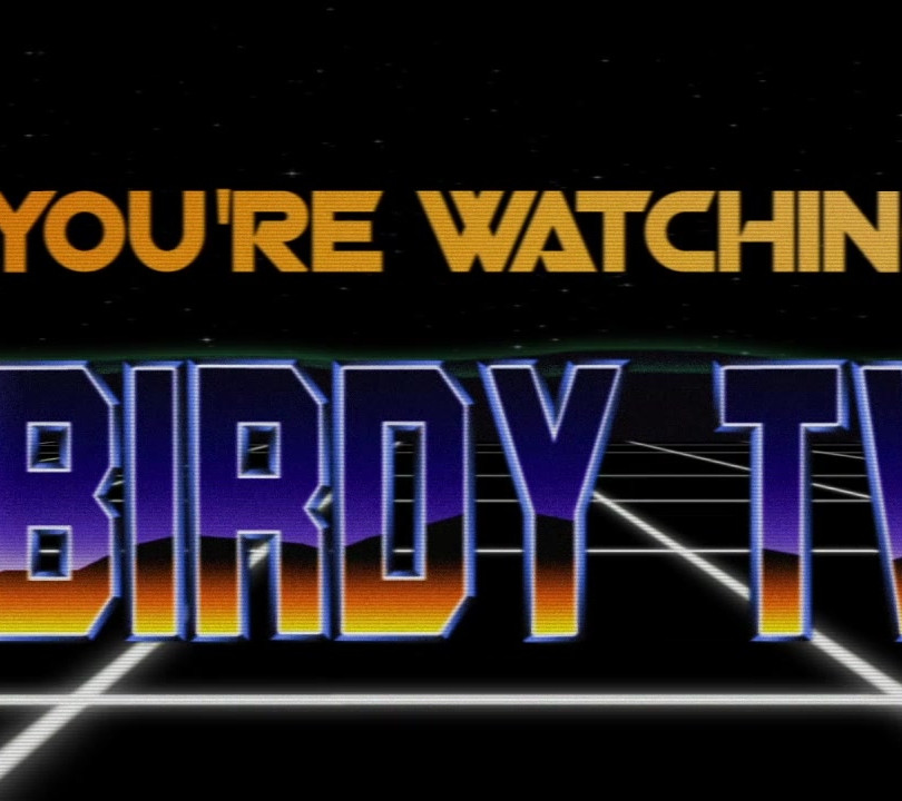 Birdy TV Bump