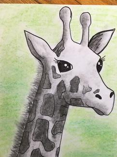 Charcoal Giraffe