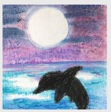 Dolphin at Dusk