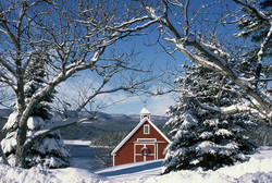 Red Barn and Winter