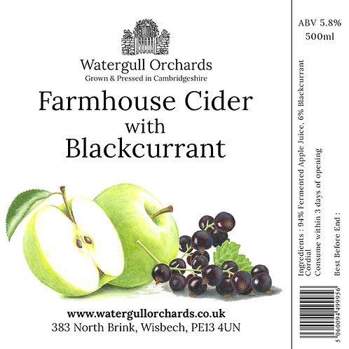 50cl Farmhouse Cider with Blackcurrant (5.8%)