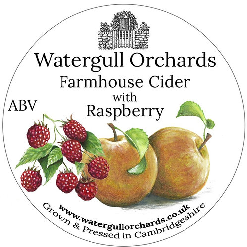 20 Litre Raspberry Bag in Box Cider (6.2%)