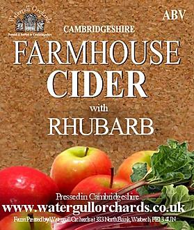 rhubarb cider label