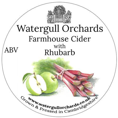 20 Litre Rhubarb Bag in Box Cider (5.6%)