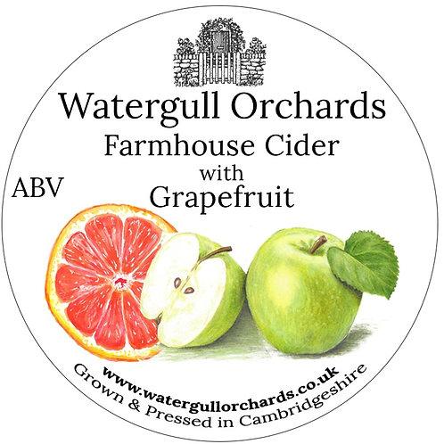 20 Litre Pink Grapefruit Bag in Box Cider (6.3%)