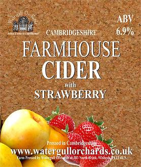 strawberry cider label