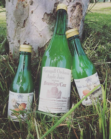 A cute photo of just a couple of the juices we make leaning against one of the trees in our orchard