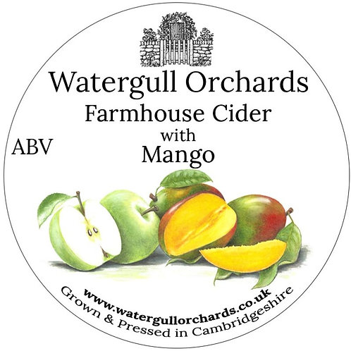 20 Litre Mango Bag in Box Cider (6.2%)