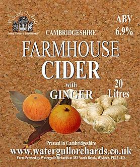 ginger cider label