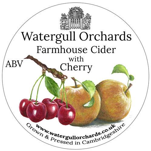 20 Litre Cherry Bag in Box Cider (5.6%)