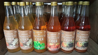 A lovely shot of the ciders taken by the team up at The Secret Garden Touring Park in Wisbeh