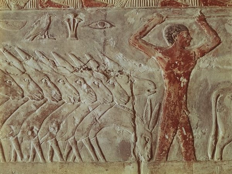 Mysteries of Saqqara Egypt (Updated)