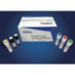 RNA Detection Kit PCLMD 2019001.png