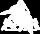 rayven logo white.png