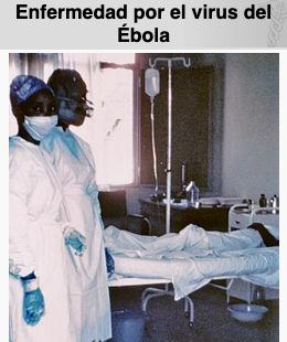 Confirman muerte por ébola en Guinea