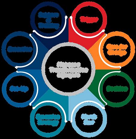 Nepanoa Transformation Lifecycle2.png
